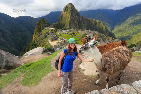 Young woman standing with friendly llamas at Machu Picchu overlook in Peru