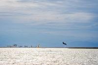 Kitesurfers in the lagoon
