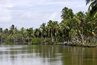 Flußlandschaft im Norden von Ilha Atalaia, Bahia, Brasilien, Südamerika