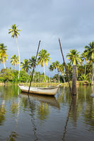 Rustic docked boat and coconut trees in the background.