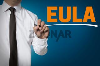 Eula wird von Geschäftsmann geschrieben hintergrund konzept