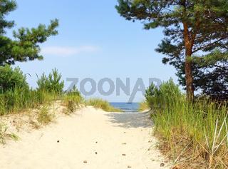 Der Weg zum Strand am Meer