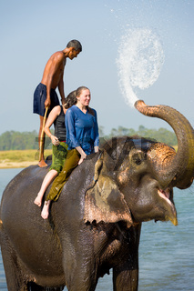 Female Tourists Elephant Ride Trunk Water Splash