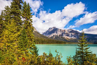 Magic green lake surrounded by forest