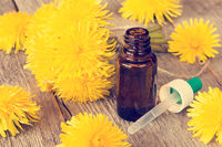 Dandelion flowers and bottle with dropper