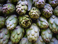 artichoke - Vegetable background with fresh artichokes