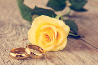 Wedding rings and yellow rose