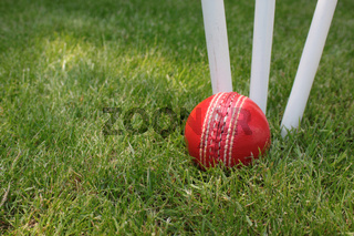 Ball and Stumps