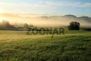 Naturlandschaft am Morgen
