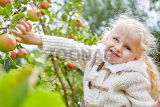 Blondes Mädchen im Apfelbaum