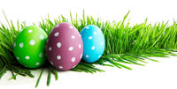 Row of Easter Eggs in grass