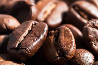 Kaffeebohnen Hintergrund V1