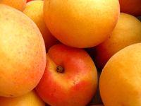 Aprikosenkorb