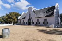 Vineyard Groot Constantia, South Africa