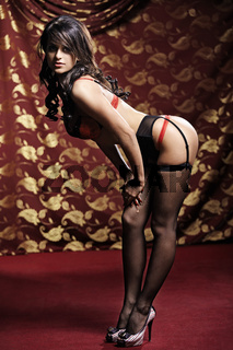 The beautiful girl in underwear and stockings in a luxury interior