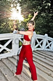 Tänzerin, Dancer