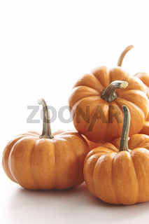 Mini pumpkins on white