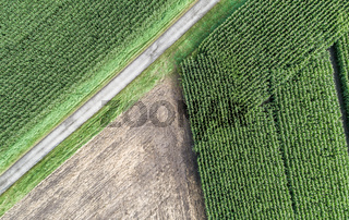 Abstract triangle. Aerial photograph of a harvested arable land next to a maize field