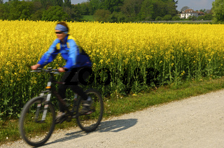 Radfahrer am Rapsfeld