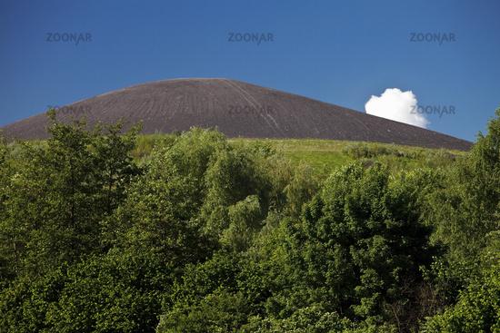 spoil tip Mottbruchhalde looks like a volcano, Gladbeck, Ruhr Area, Germany, Europe