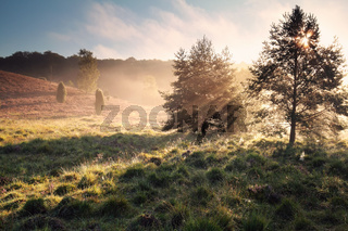 morning sunshine over misty hills