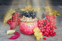 Ripe fruits and berries in the fall