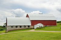 Red Barn on a Dairy Farm