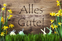 Easter Decoration, Gras, Alles Gute Means Best Wishes