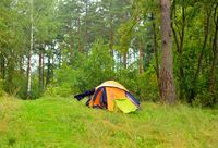 Camping tent in summer forest.