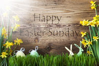 Sunny Egg And Bunny, Gras, Text Happy Easter Sunday