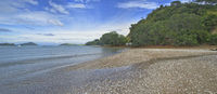 NZ Summer 2011 - Coromandel Peninsula - Shore W