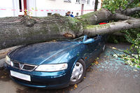 Storm damage car