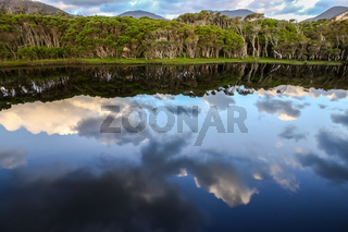 Reflections in Tidal River, Wilsons Promontory National Park, Victoria, Australia