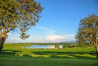 Landscape of meadow