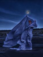 White veil in the moonlight