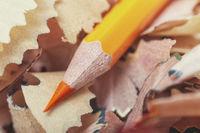 One orange pencil and shavings
