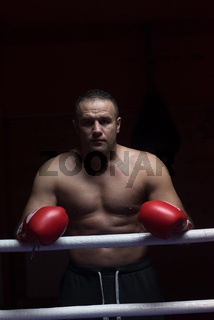 portrait of muscular professional kickboxer