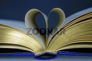 Herz im Buch