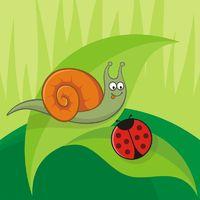 Snail with ladybug