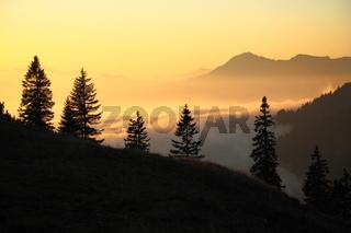 Lichtstimmung im Gebirge