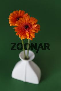 Orangene Blumen in einer Vase