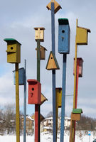 Thirteen wooden birdhouses are installed in a frozen city
