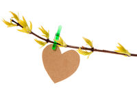 Paper heart hanging on the spring branch
