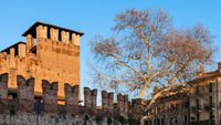 Castelvecchio Castel in Verona city in evening