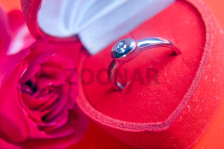 red rose with a ring of white gold in a box