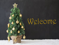 Christmas Tree, Text Welcome, Black Concrete