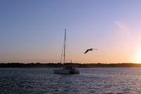 Segeln in den Sonnenuntergang
