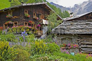 Bauernhof in Südtirol / farm with flowers