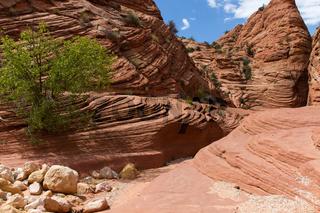 Wire Pass Slot Canyon 9