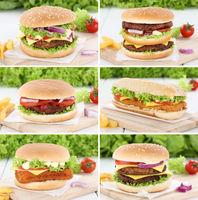 Hamburger Sammlung Collage Cheeseburger Zwiebel Fleisch Tomaten Salat